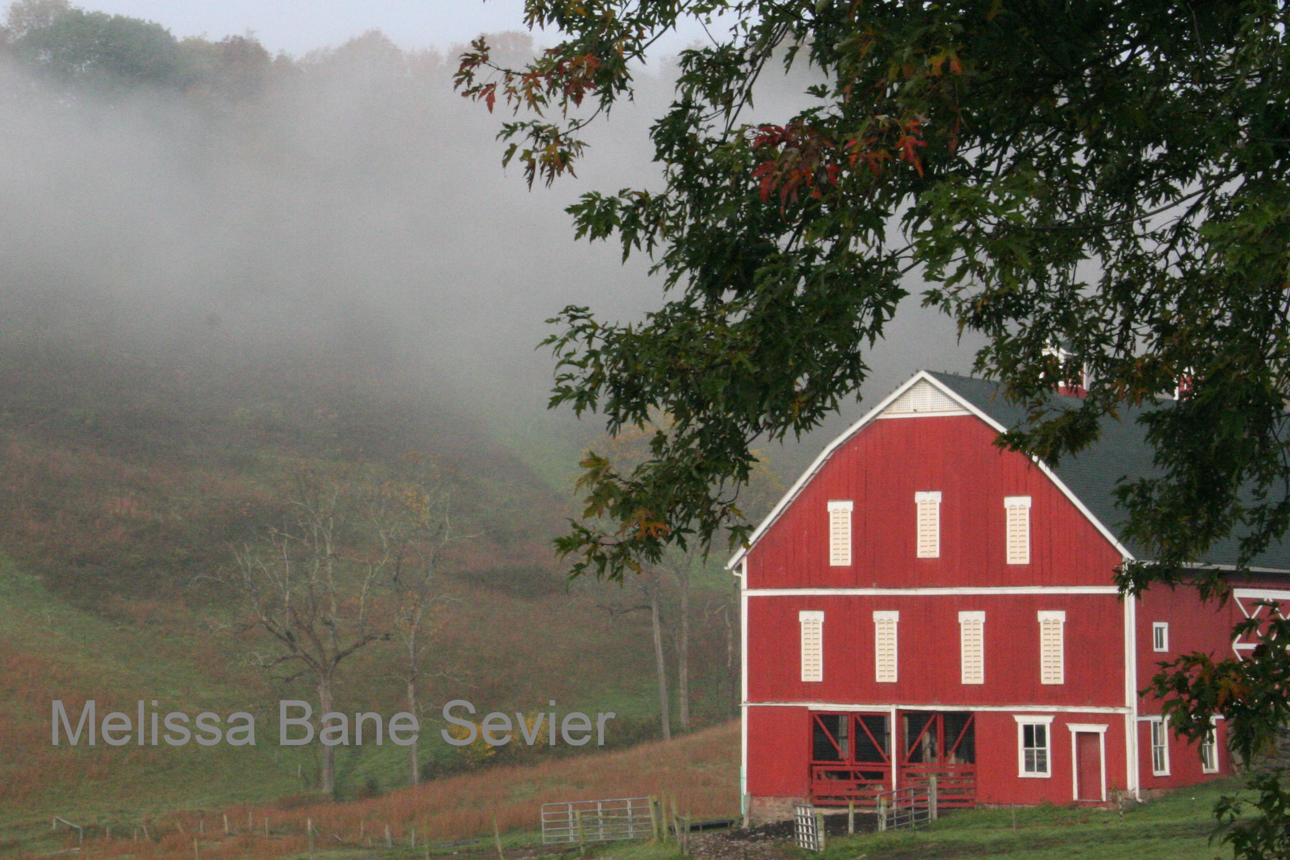Pennsylvania Barn in Mist