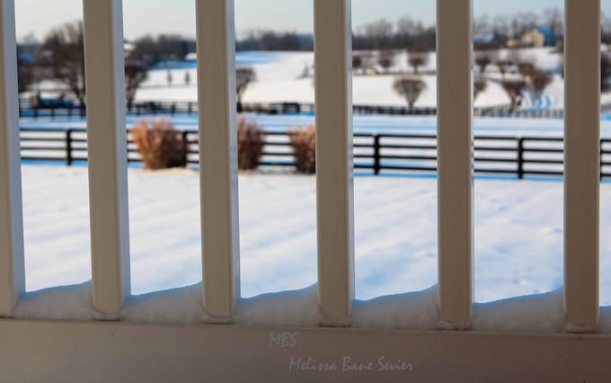 Snow makes everything beautiful