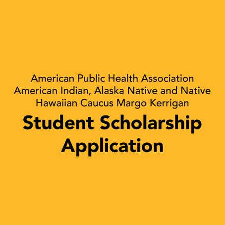 Margo Kerrigan Student Travel Scholarship Application