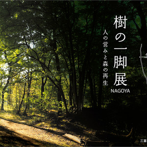 nagoya_omote.jpg