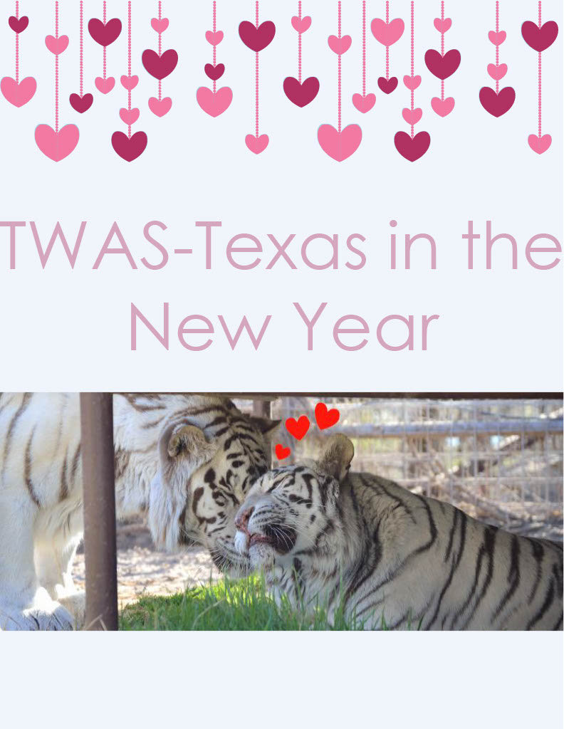 TWAS-Texas in the New Year_checked by Ke