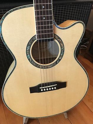 Epiphone Performer SE Acoustic Guitar