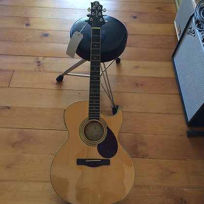 SAMICK GREG BENNETT ACOUSTIC / ELECTRIC