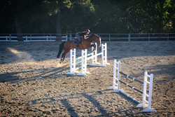 Christy and Hughie jumping in the outdoo