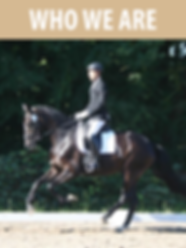 What is Onoda Dressage?