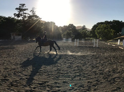 Our large outdoor arena