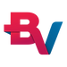 logo-bv-financeira-2048.png