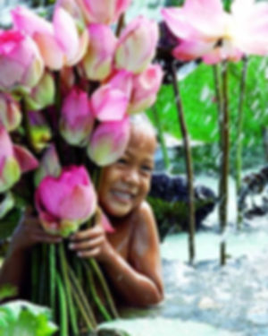 Fille aux lotus.jpg