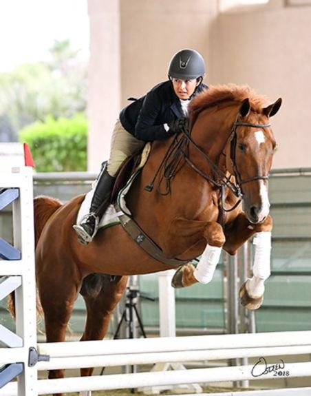 Horseshowherbie%20_edited.jpg
