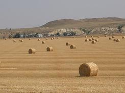 Baker Montana Real Estate, Northwest Real Estate