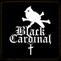 Одежда Black Cardinal