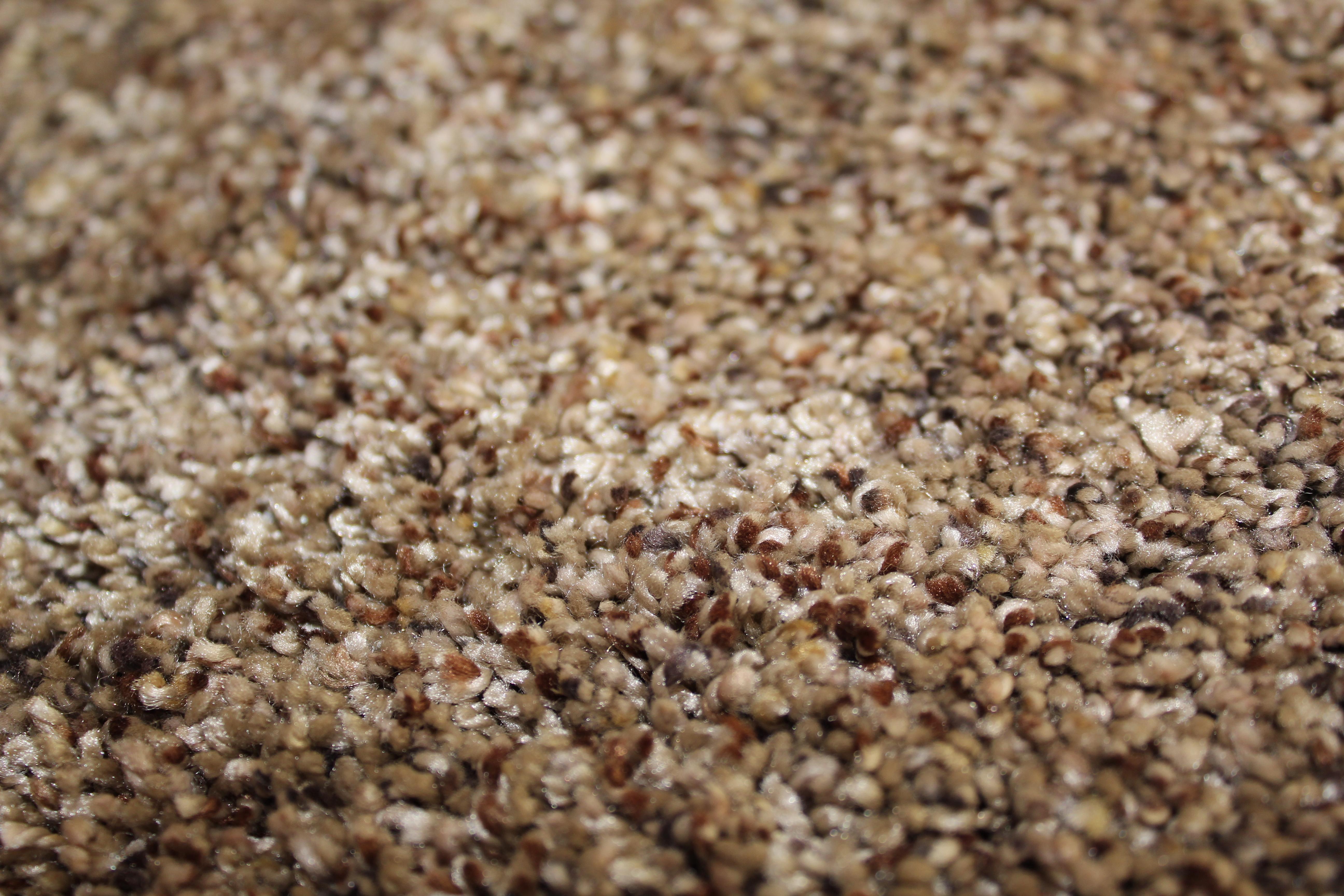 Soft Suede - Barley