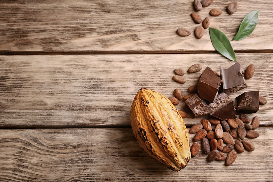 shutterstock - cocoa.jpg