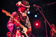 Renowned Nigerien guitarist comes to Hill and Holler