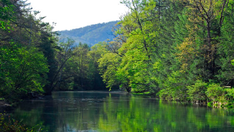 Take a Hike in the Greenbrier Valley