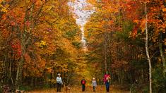 Leaf Peeper Weekend Destinations