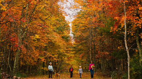 Leaf Peeper Weekend Destinations
