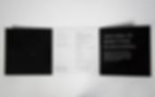 Screen Shot 2020-06-16 at 4.49.28 PM.png