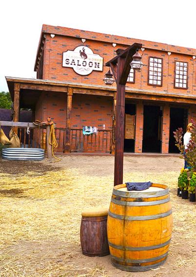 Western Town Reception