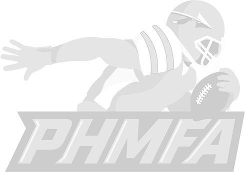 Optimized grey logo.jpg