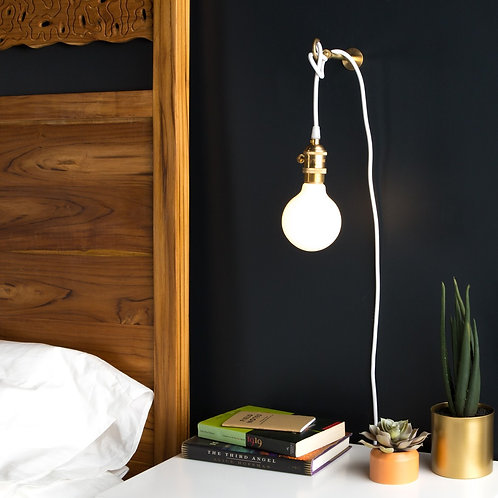 Plug In Pendant / Sconce
