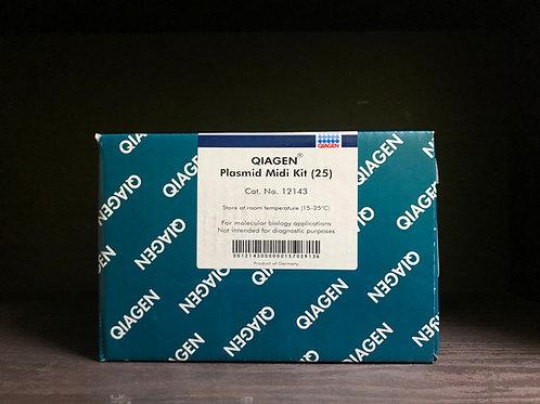 Qiagen, Plasmid Midi Kit [25preps], 12143