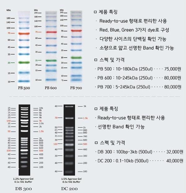 RAON protein marker, pb500, pb600, pb700