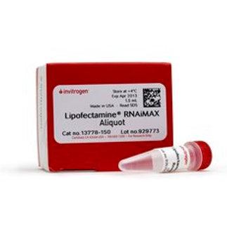 Lipofectamine™ RNAiMAX Transfection Reagent, 13778-150