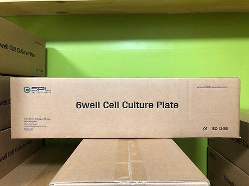 SPL, 6 well Cell Culture Plate [50/cs], 30006
