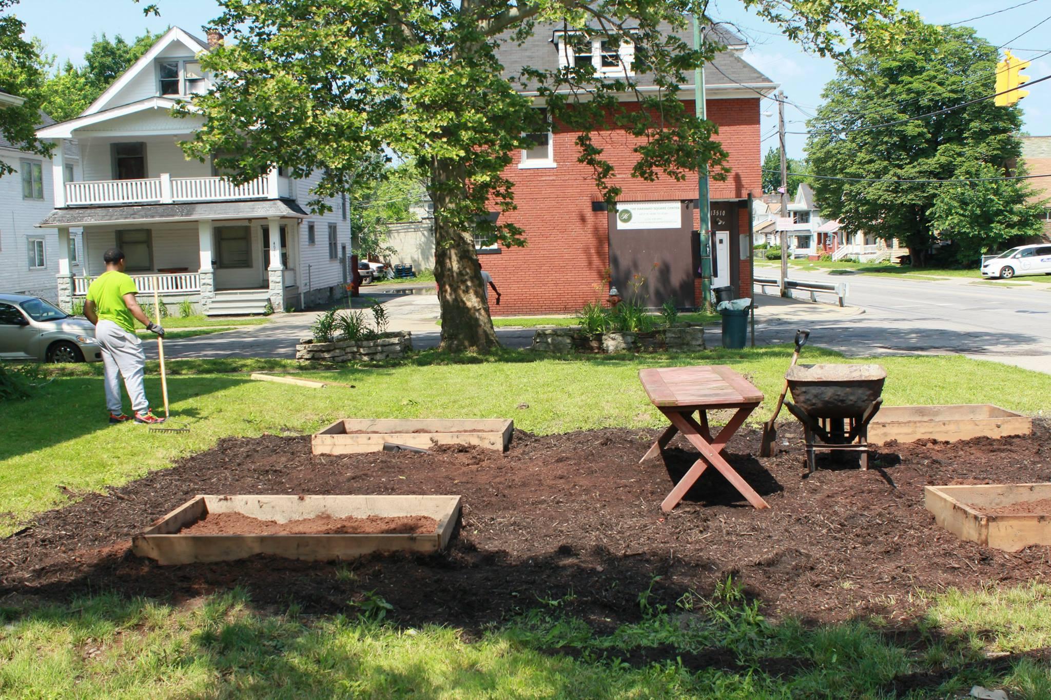 THSC Creation of Garden