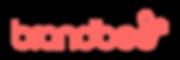 brandbee_logo_logotyp-300x100.png