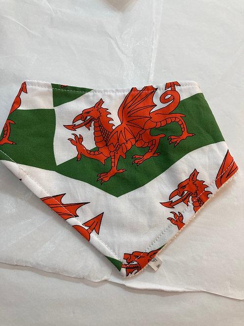 Wales dribble bib