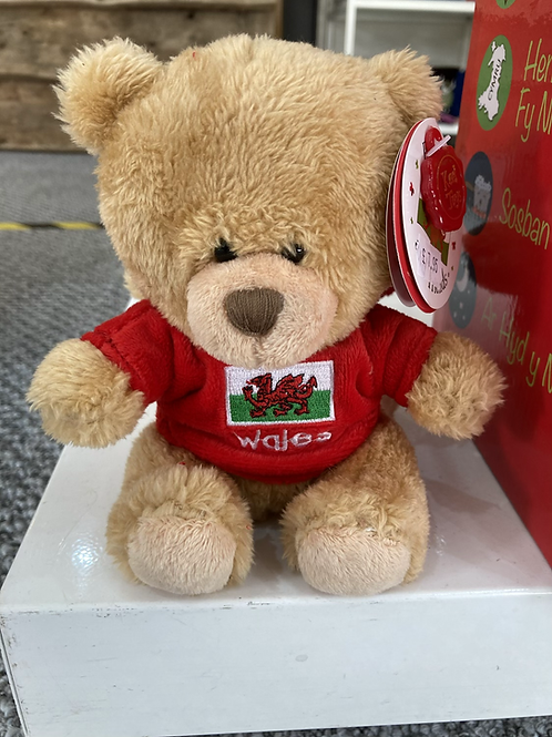 Welsh teddy