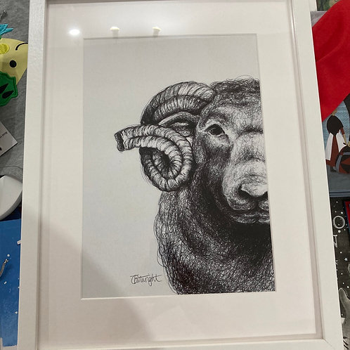 Black and white ram 🐏 A4