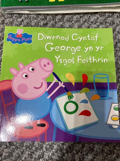 Diwrnod Cyntaf George