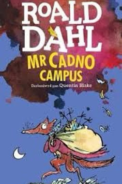 Mr Cadno Campus