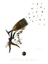 20 - Dom Perignon