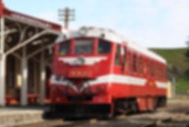RM31 at Ormondville Station - Image: T S