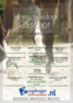 Poster HIO 2020 LR.jpg