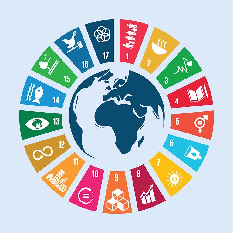 Verhaalwedstrijd Global Goals