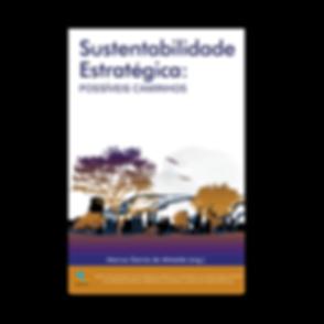 Site_-_Ads_-_Sustentabilidade_Estratégi