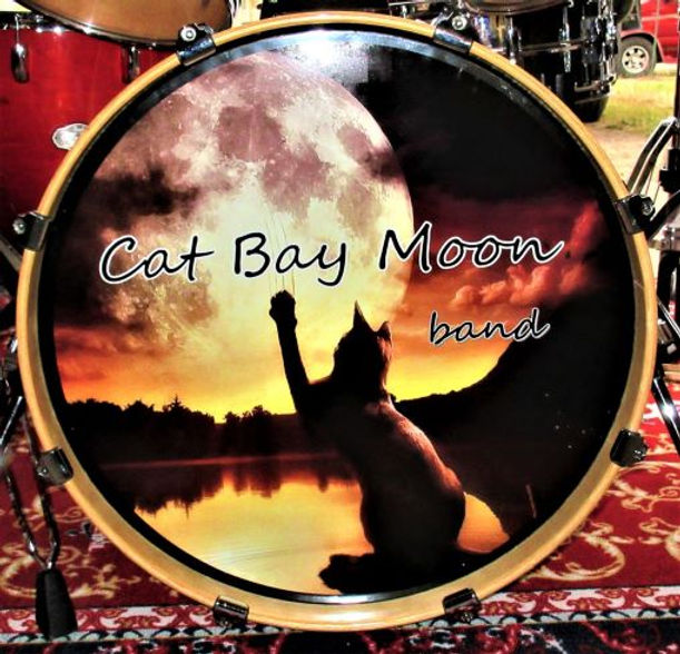 CAT BAY DRUM 4.jpg