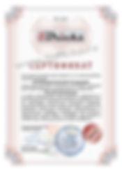 Сертификат официального представителя 5bricks