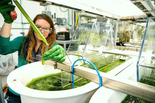 Eco Innovation Scientific Progress :ENERGY