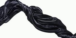 Black Silk (triptych), Panel II