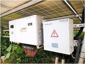太陽光発電所のパワコン周辺の草刈り雑草対策重要です