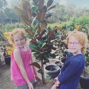 twins helping