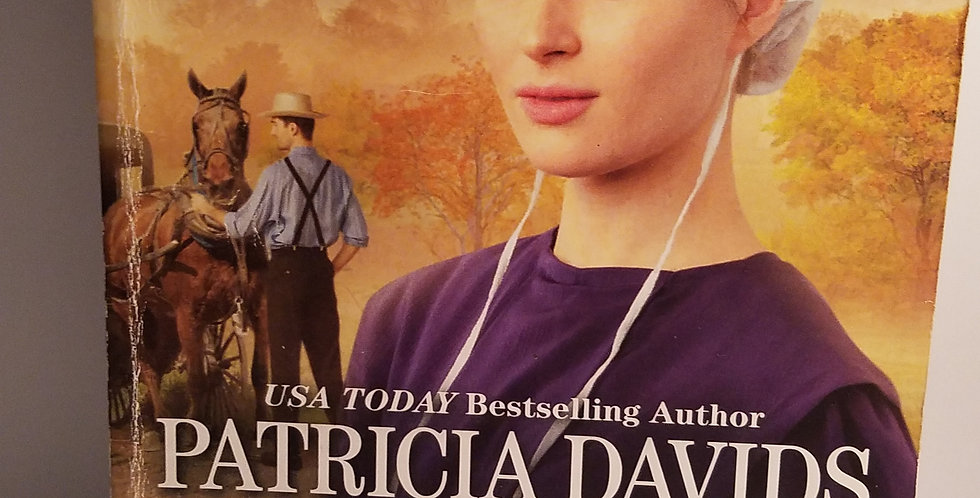 An Amish Harvest (#1) by Partrical Davids