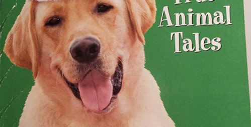 The Dog who Saved Christmas and other True Animal Tales by Allan Zullo