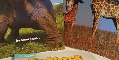 Animal Bundle (3 books)